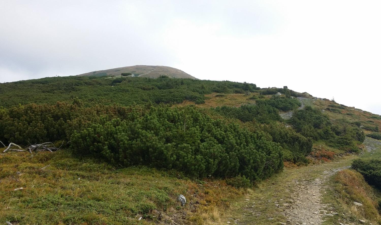 Aproape de vârful Omu, munții Suhard