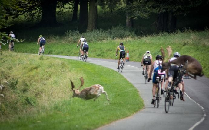 cerb-triatlet-erik-scraggs