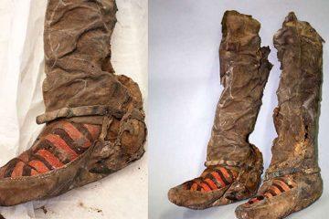 Mumia în Adidas, Mongolia